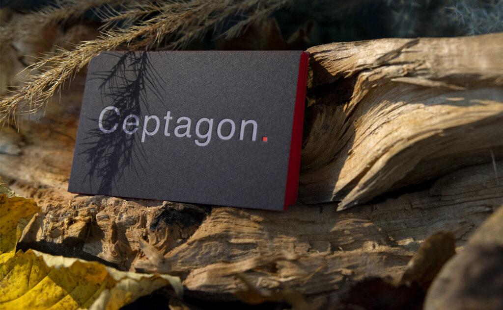 Die Kantenfärbung auf den Visitenkarten von Cepatgon mit dem Farbschnitt für auffallend visuelle Kontraste.
